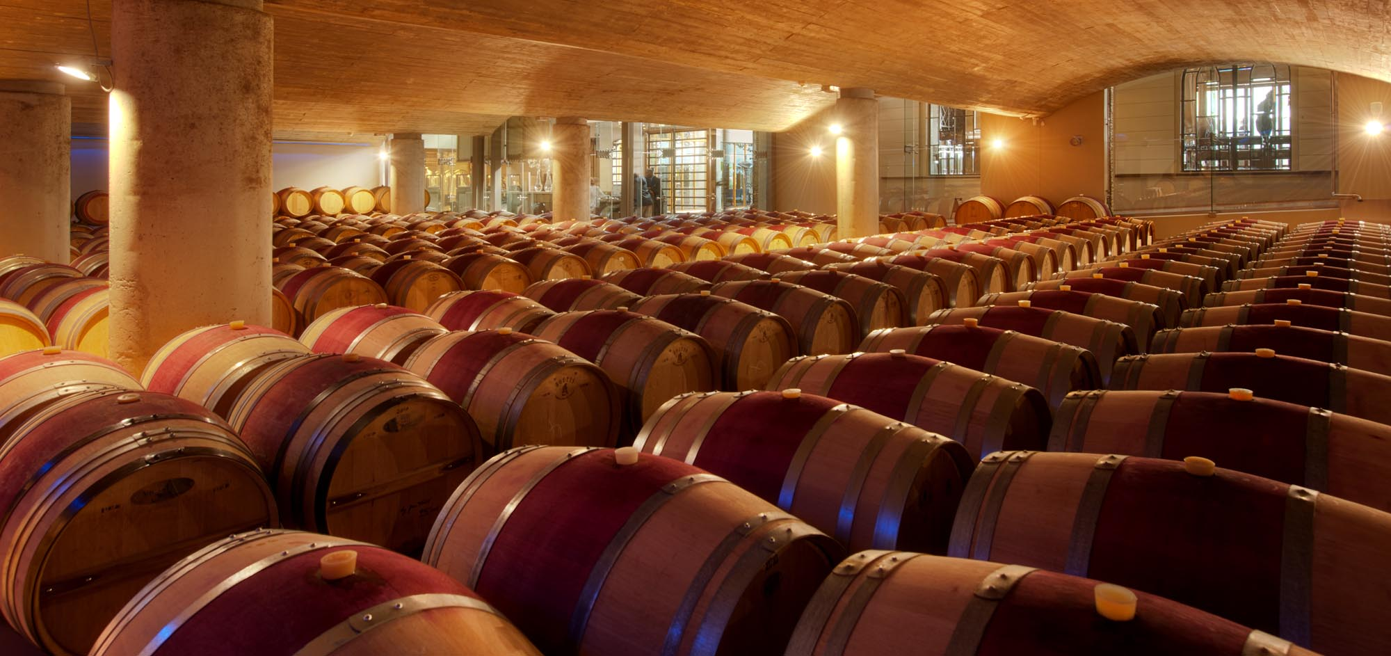 Delaire Barrel Cellar - Cape Winelands