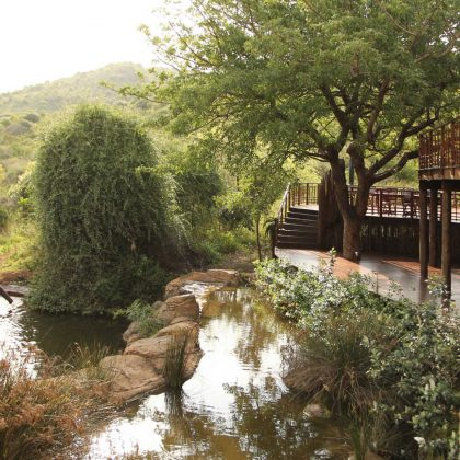 thanda-private-game-reserve