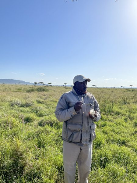 knowledgeable and wonderful ranger, Wilson at Angama Mara, who shares all his wisdom and all things beautiful