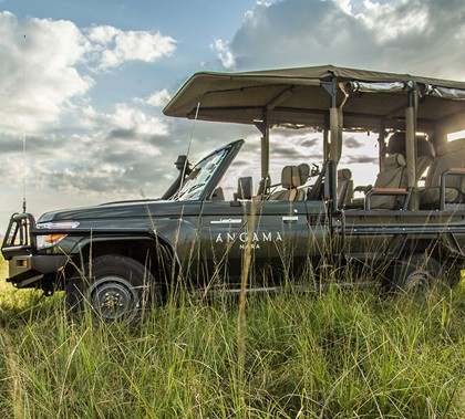 Marko's - Game drive at Angama Mara